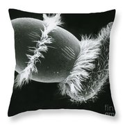 Didinium Ingesting A Paramecium Throw Pillow