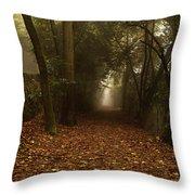 Diferent Paths Throw Pillow