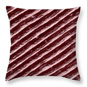 Diffraction Grating Throw Pillow