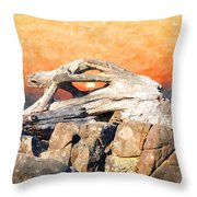 Diftwood Sunset Throw Pillow