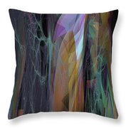 Abstract No 19 B Throw Pillow