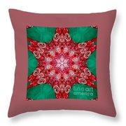Digital Kaleidoscope Red-green-white 8 Throw Pillow