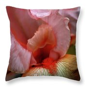 Digital Oil Painting Pink Iris 9915 O_2 Throw Pillow