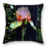 Digital Painting Pink And Yellow Iris 6758 Dp_2 Throw Pillow