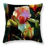 Digital Painting Vibrant Iris 6764 Dp_2 Throw Pillow