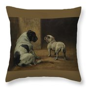Dignity And Impudence Throw Pillow