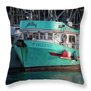 Diligence At French Creek Throw Pillow