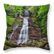 Dill Falls Throw Pillow