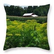 Dill Field Hudson Valley Ny Throw Pillow
