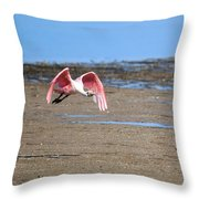Ding Darling - Roseate Spoonbill - Taking Flight Throw Pillow