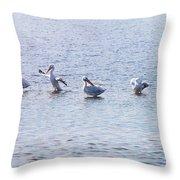 Ding Darling Wildlife Refuge IIi Throw Pillow