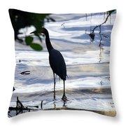 Ding Darling Wildlife Refuge Iv Throw Pillow