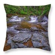 Dingmans Creek II Throw Pillow