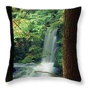 Dingmans Falls Dingmans Ferry Pennsylvania Throw Pillow