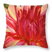 Dinner Plate Dahlia Flower Art Print Orange Baslee Troutman Throw Pillow