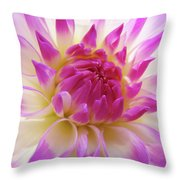 Dinner Plate Dahlia Flower Art Prints Canvas Floral Baslee Troutman Throw Pillow