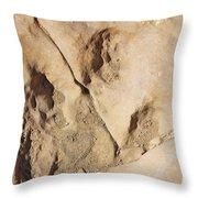 Dino Tracks In The Desert 3 Throw Pillow
