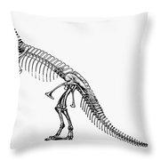 Dinosaur: Ceratosaurus Throw Pillow