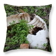 Dinosaur Egg Throw Pillow