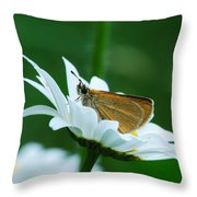 Dion Skipper In Square Throw Pillow