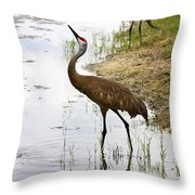 Dip In The Pond Throw Pillow