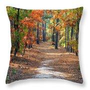 Autumn Scene Dirt Road Throw Pillow