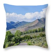 Dirt Road To Serenity Throw Pillow