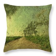 Dirt Road To The Fields Throw Pillow