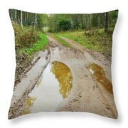 Dirty Autumn Road With Brown Pools After Rain Throw Pillow