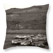 Dirty Bergs Throw Pillow
