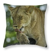 Dirty Paws Throw Pillow