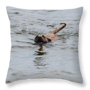 Dirty Water Dog Throw Pillow