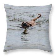 Dirty Water Dog Throw Pillow