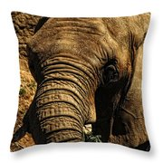 Disappearing Elephant Throw Pillow