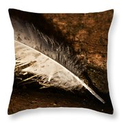 Discarded Feather Throw Pillow