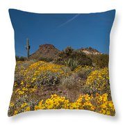 Discovered Gold At Brown's Mountain Throw Pillow