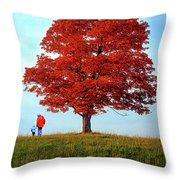 Discovering Autumn - Reflection Throw Pillow