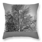 Discovery Park No.1 Throw Pillow
