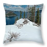 Discovery Point Panorama Throw Pillow
