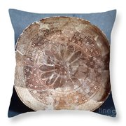 Dish Of Halaf Ware Throw Pillow