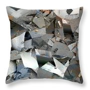 Display Case Throw Pillow