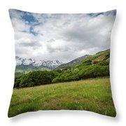 Distant Snow-capped Mountains Throw Pillow