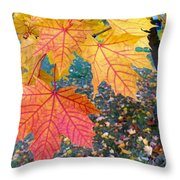 Distinctive Maple Leaves Throw Pillow