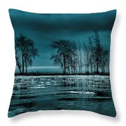 Distorted Reflections  Throw Pillow