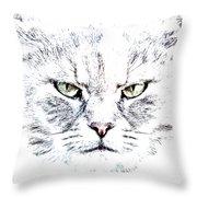 Disturbed Cat Throw Pillow