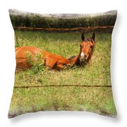 Disturbed Napping Throw Pillow