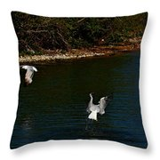 Dive Bomber Throw Pillow by Amanda Struz