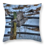 Dive Dive Dive Throw Pillow