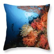 Diver Swims By A Soft Coral Reef Throw Pillow
