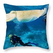 Divers Swim Near A Cuttlefish Throw Pillow